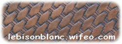 motif répété basket incurvé ton sur ton marron cuir tannage naturel effet tressé martelé sur cuir pour personnalisation