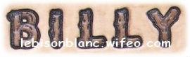 lettres alphabet buches prénom chien chat furet animal de compagnie